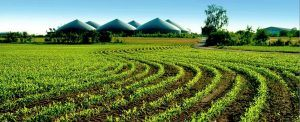 foto-biogas