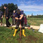 Forestazione urbana, piantati più di 300 nuovi alberi da Sindaco, assessori, consiglieri e volontari